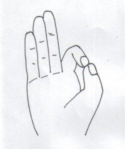 handhaltung